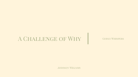 A Challenge of Why